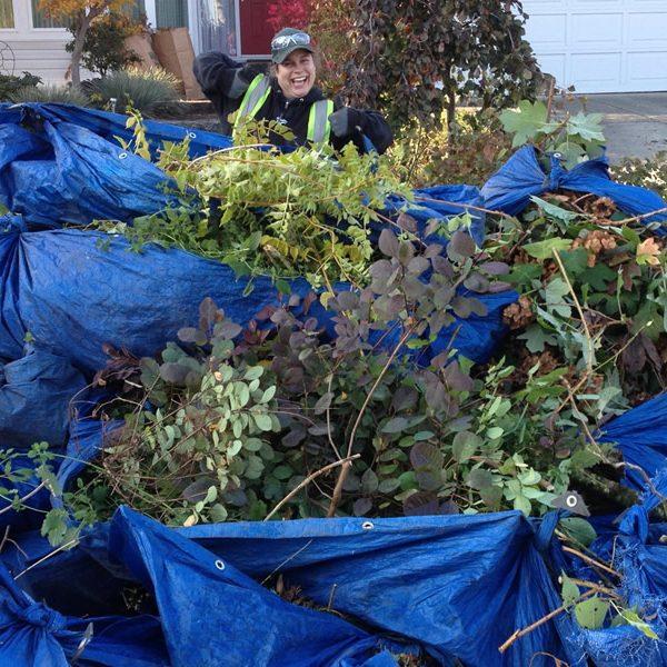 fall Pruning1200x600